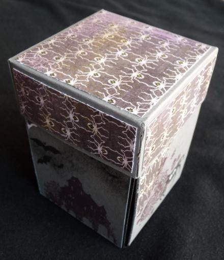 Fledermausbox 1