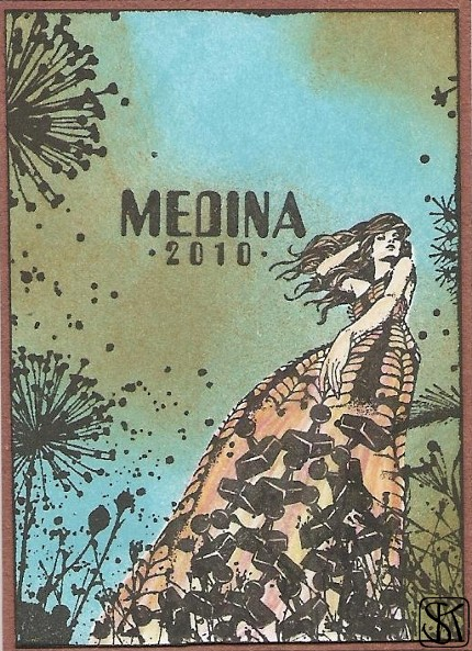 Medina 2010